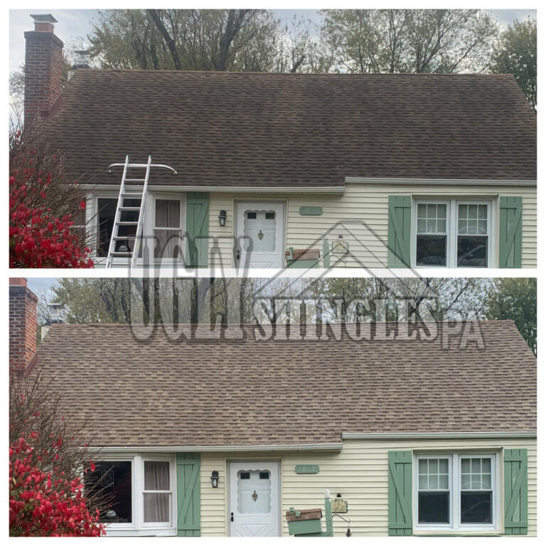 Ugly Shingles Roof Cleaning