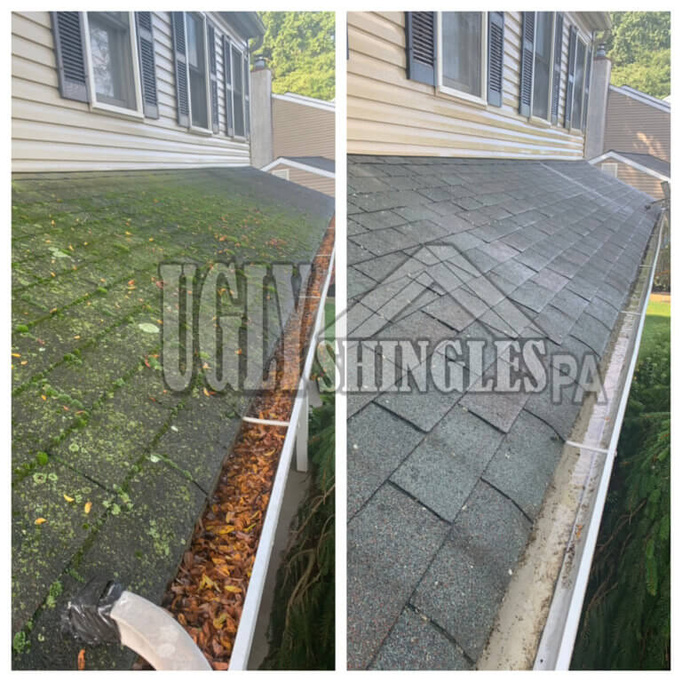 Ugly Shingles PA Gutter Cleaning